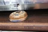 Cinghia dell'anello del legare (acciaio inossidabile 304)