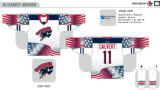 Hokey di ghiaccio americano personalizzato dei falchi 2006-2015 di Springfield della Lega di Hockey dei capretti delle donne degli uomini Jersey