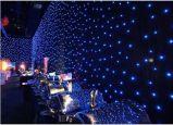 Fornitore LED Curatin dell'indicatore luminoso della fase del LED con le stelle