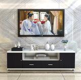Wohnzimmer-Möbel Fernsehapparat-Schrank