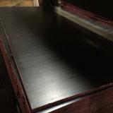 Le film de couche de couleur de noir de placage de faisceau de peuplier a fait face au contre-plaqué (9X1250X2500mm)