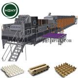 Hghy los residuos de alta capacidad de la bandeja de fruta de pulpa de papel Caja de huevo de la bandeja de huevos que hace la máquina