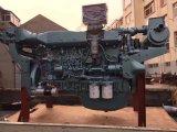 De Dieselmotor van de Reeks 155kw van Steyr van Sinotruk voor Marine (WD415/WD615/D12)