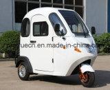 Mini tricycle électrique neuf avec la pleine cabine