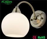 Fabrik-direkte Farben-weiße Schlafzimmer-Wand-Lampe und Beleuchtung für Dekoration