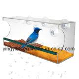 Freies Plexiglas-Acrylvogel-Rahmen