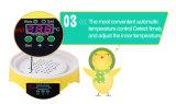 Hhd 판매를 위한 기계를 부화하는 가장 새로운 음악 계란 부화기 Yz9-7 가금 부화기