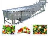 Lavage de service d'ODM d'OEM et machine de séchage pour le légume et le fruit