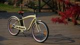 Eのバイク電池の製造者からの安い電気自転車