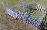 가축 담을%s 용접된 철망사 담에 의하여 사용되는 검술