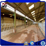 Nuovi materiali da costruzione poco costosi prefabbricati per la Camera dell'azienda agricola di bestiame