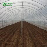 販売に使用する低価格の小型温室