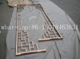 De decoratieve Laser van het Roestvrij staal sneed het OpenluchtdieScherm van het Metaal in China wordt gemaakt
