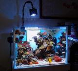 Shanda светодиодный индикатор ресурсов пресной воды в аквариуме растений и рыб и индикатор резервуара для воды XL-03