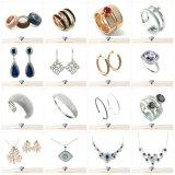 Dame Silver Earring voor Semi Edelsteen (E5061)