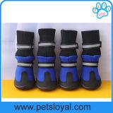 L'alto animale domestico del fornitore calza i caricamenti del sistema del cane con Velcro riflettente