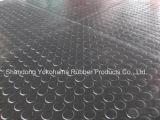 Pavimentazione di gomma del vicolo (1900mm*1350mm*20mm) esportatrice al servizio europeo