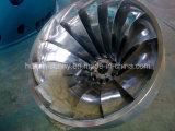 Турбина Hl205 средств головное (метр 22-110) /Hydropower/Hydroturbine Фрэнсис гидро (вода)