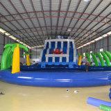 子供のためのプールが付いている巨大で膨脹可能なスライド