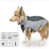 Выдвиженческий любимчик одевая куртку водоустойчивой собаки напольную