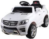 Лицензированная езда на автомобиле с картиной