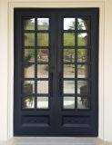 Elegante französische moderner Entwurfs-Eisen-Tür