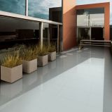 600 * 600 de color gris claro porcelánico pulido Suelo del azulejo (WT-HJ600A)