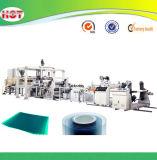 De Stijve Plastic Lijn van uitstekende kwaliteit van de Machine van de Productie van het Blad van het Huisdier voor Vacuüm die Pakket vormen