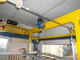 Cadena de producción Full-Automatic del vidrio laminado de PVB
