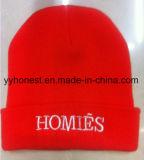 2017 Nouveau Gros bonnets bonnets tricotés personnalisé