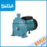 Pompa centrifuga standard dell'acqua di superficie 1.5HP di energia elettrica