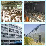 Поставщик изготовления фабрики отработанного вентилятора цыплятины Qingzhou