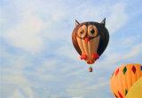 Balão de Ar Quente polimórfico coloridos para ir visitar a concorrência de voo de ida de casamento