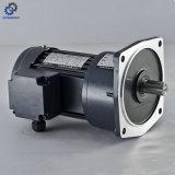 AC van de enige Fase Motor met Rem Verticale Type_C