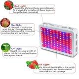 LED de efecto invernadero interior aumentando la luz de espectro completo de 300W LED lámpara de 300W Crecimiento