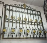 Modèle ornemental de gril de guichet de fer travaillé