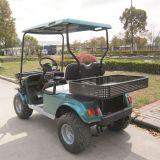 CER genehmigte das 2 Sitzelektrisches 4 Rad-Laufwerk-Jagd-Auto (DH-C2)