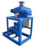 Wurzeln Pump und Leybold Vacuum Pumping System für Transformer