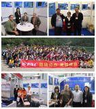 Chinesisches Frequenz-Laufwerk Wechselstrom-Laufwerk des Frequenz-Inverter-VFD variables