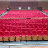 La iglesia preside la silla del auditorio de las sillas del teatro de conferencia del asiento del auditorio de las sillas del teatro de conferencia (R-6157)