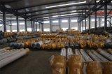 Konkrete Pflanzenschrauben-Förderanlage für Puder für Verkauf (LSY219)
