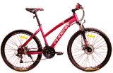 2017new 모형 숙녀 산악 자전거 또는 Bicycle/MTB