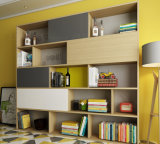 Concevoir l'étagère pure de couleur