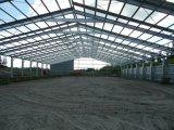 Almacén porta de la estructura de acero de la luz del marco para el centro logístico