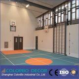 体育館の内壁の装飾の溝の木の吸音力のパネル