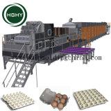 A linha de produção de moldagem de Celulose Hghy para máquina de bandeja de garrafas de vinho