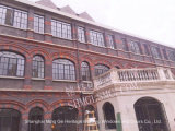 Oud Shanghai maakt de Zwarte Vensters van het Staal van het Rooster