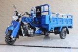 Motocicleta elétrica de três rodas do triciclo do passageiro da carga