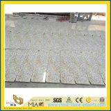 Nouveau matériel de construction en granite Ariston Gold pour la construction Décoration murale / murale