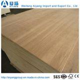 Shandong contraplacado para embalagem de baixo custo para palete